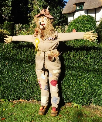 11+ Harry Potter Scarecrow